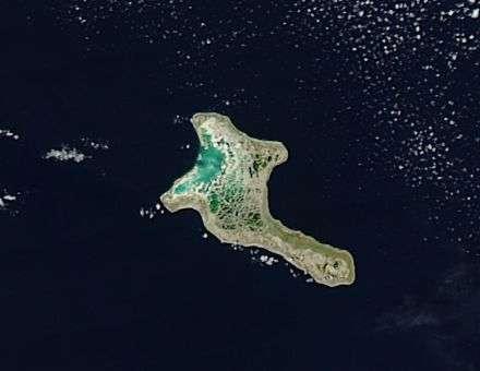 NASA satellite spots Christmas