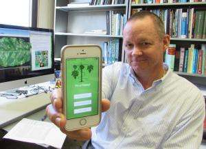Scientists create new app to track papaya virus and GE papaya