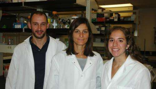 Researchers find nasal immunity not restricted to land vertebrates