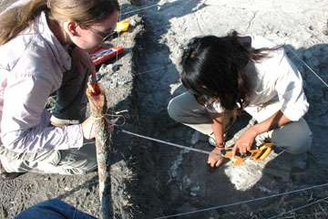 Researcher discusses international team to protect ancient footprints
