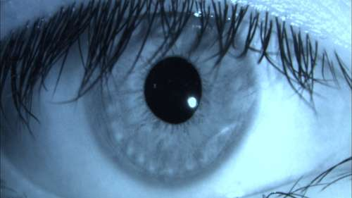 Computer scientist sees new possibilities for ocular biometrics