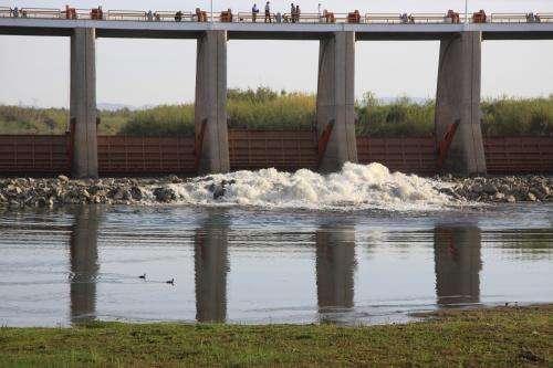 Researchers evaluate unprecedented environmental flow to Colorado Delta