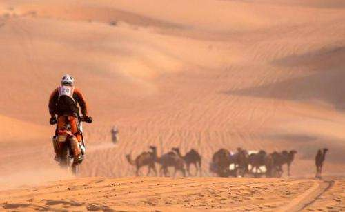 A biker speeds towards camels in the Rub al-Khali desert, one of the world's largest environmental sanctuaries on land. The UN i