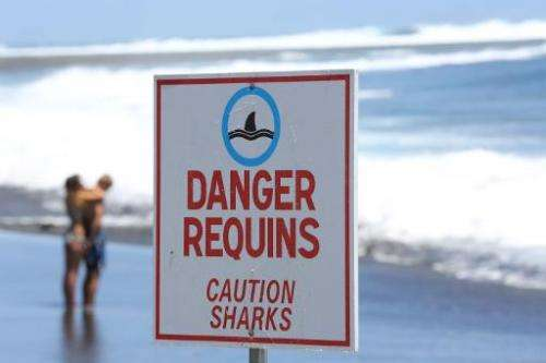 """A couple stands on the beach near a sign reading """"Caution Sharks"""" in Etang-Sale, a region of the La Reunion island Fre"""
