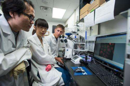A hybrid vehicle that delivers DNA