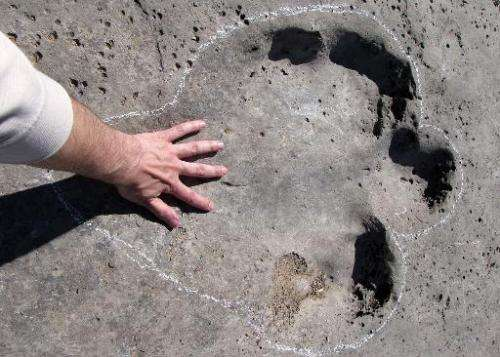 A man touches his hand on one of the fossilised dinosaur tracks on Turkmenistan's Plateau of the Dinosaurs, on April 15, 2014