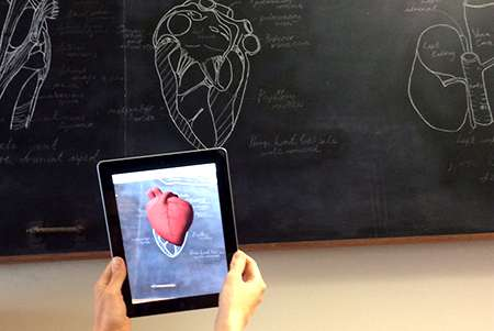 Analysing animal anatomy using augmented reality