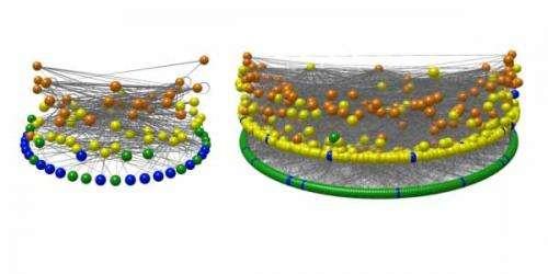 Ancient food webs developed modern structure soon after mass extinction