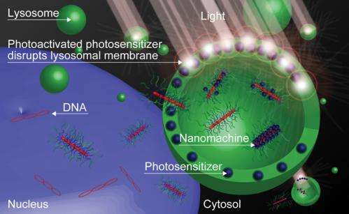A new nanomachine shows potential for light-selective gene therapy