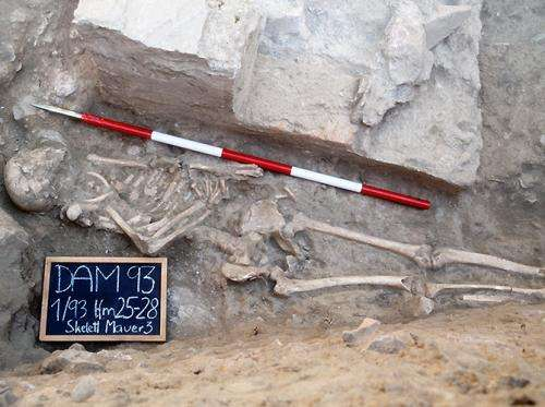 Anthropology unlocks clues about Roman gladiators' eating habits