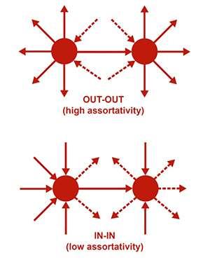 Assortativity signatures of transcription factor networks contribute to robustness