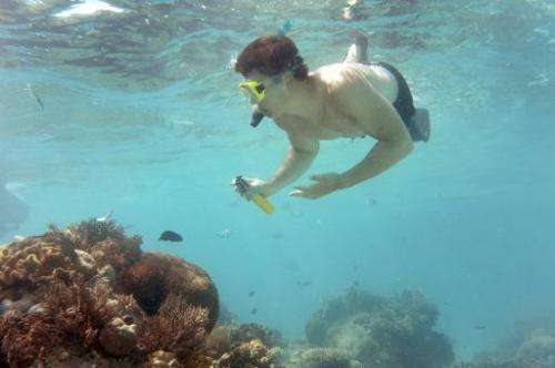 A tourist dives on Australia's Great Barrier Reef. Australia it will ban the dumping of dredging waste on most of the reef in a