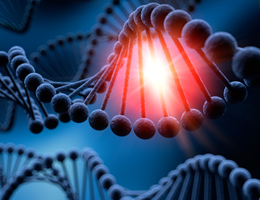 Base-pairing protects DNA from UV damage