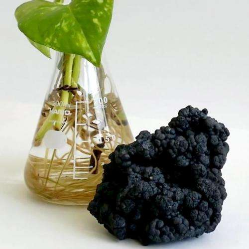 Bioinspired catalyst splits water