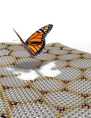 Graphene's multi-colored butterflies