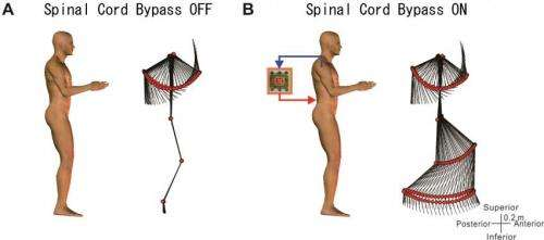 Bypass commands from the brain to legs through a computer