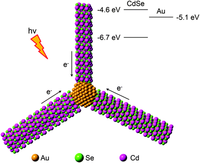 Catalysis with Au-tipped CdSe nanorod clusters