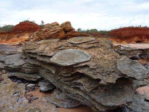 Changing dinosaur tracks spurs novel approach