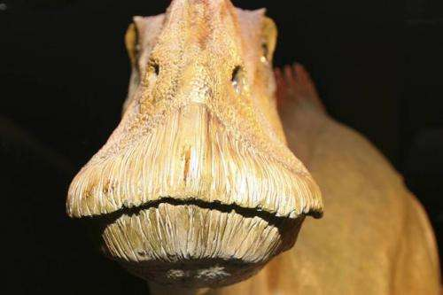 Chemical ghosts of dinosaurs may help reveal new secrets