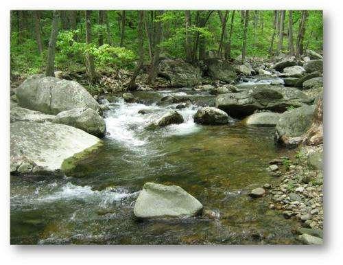 Chesapeake Bay region streams are warming