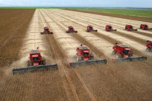 Combine harvesters crop soybeans in Campo Novo do Parecis, northwest of the capital city of Cuiaba, Brazil, on March 27, 2012