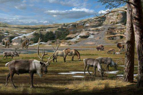 A 'smoking gun' on the Ice Age megafauna extinctions