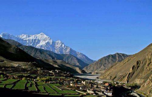 Dengue fever and malaria in the Himalayas