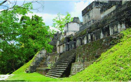 Intensive agriculture may have exacerbated drought in ancient Maya city