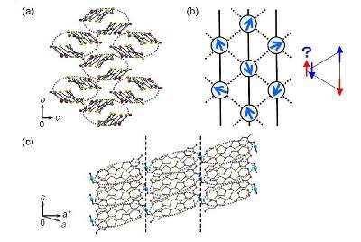 Discovery of pure organic substances exhibiting the quantum spin liquid state
