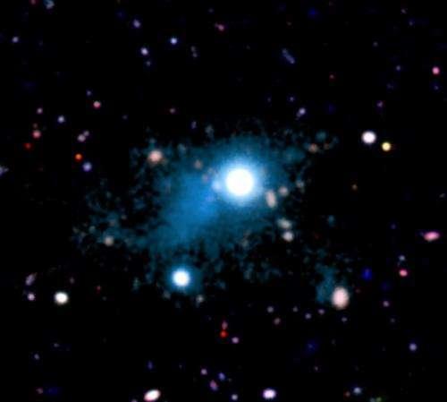 Distant quasar illuminates a filament of the cosmic web