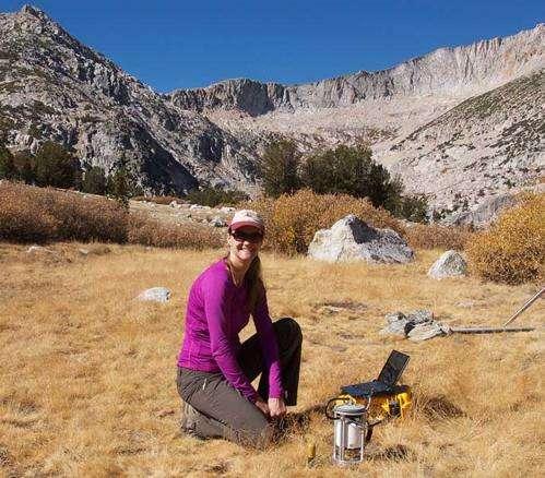 Drying Sierra meadows could worsen California drought