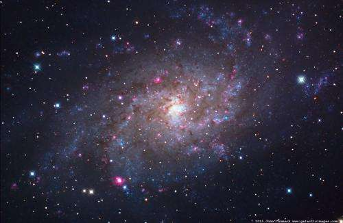 """Ellipticals and spirals comprise two different populations of """"green"""" galaxies"""