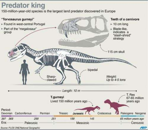 Fact file on a new dinosaur discovered in Portugal, the largest land predator found in Europe