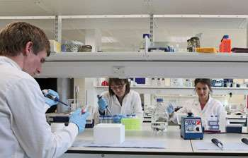 Gene therapy that could cure Motor Neurone Disease (ALS) moves one step closer