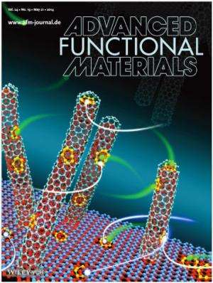 Marriage of nanocarbon and nanostructured porous carbon for next-generation batteries