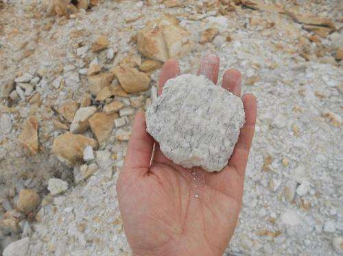Trinity geologists re-write Earth's evolutionary history books