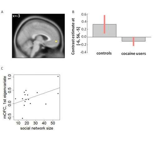 Cocaine users enjoy social interactions less