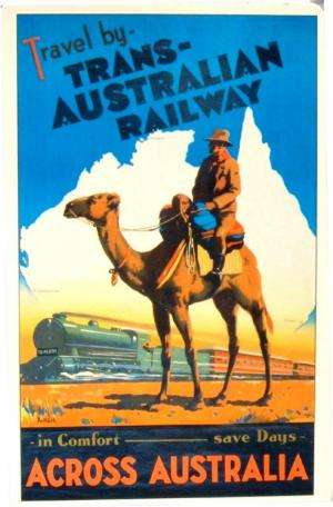 How Australia got the hump with 1 million feral camels