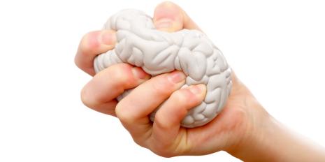 How early trauma influences behavior