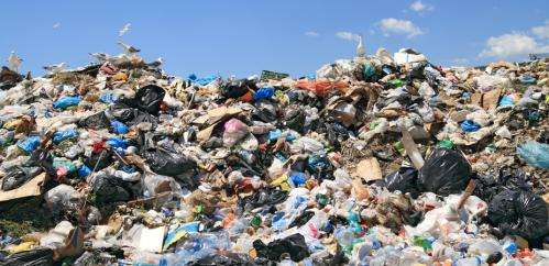 How to create wealth from waste and reduce our landfill