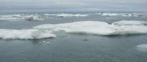 Huge waves measured for first time in Arctic Ocean