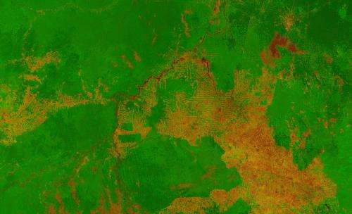 Image: Deforestation in the state of Rondônia in western Brazil, from orbit