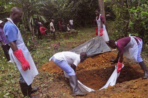 Liberia free of Ebola by Christmas, says president