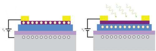 Lighting the way to graphene-based devices