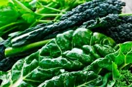 Lutein may have role in brain health