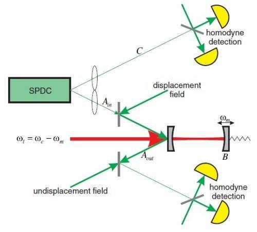 micro macro entanglement