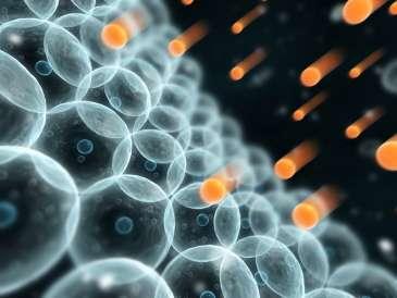 Molecular biology mystery unravelled