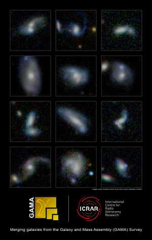 Monster galaxies gain weight by eating smaller neighbors