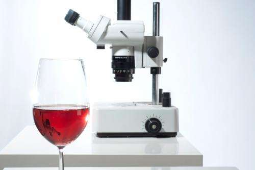 Natural substance in red wine has an anti-inflammatory effect in cardiovascular diseases