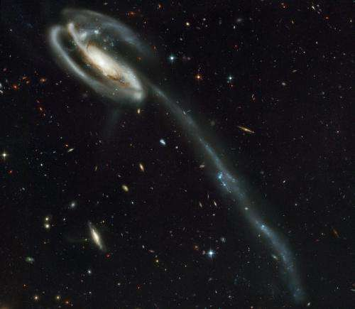 Nearby satellite galaxies don't fit standard model